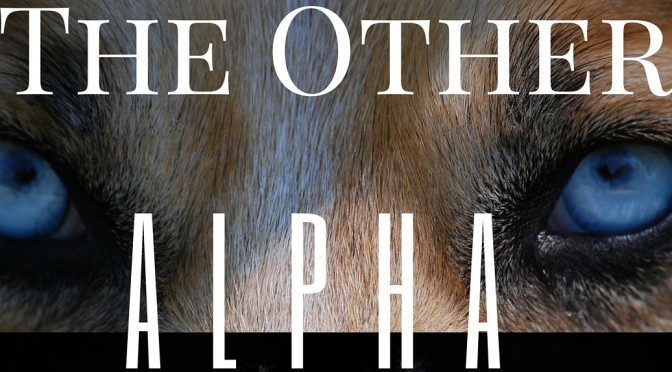 Week Eighteen – The Other Alpha