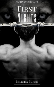 First Nights series update cover