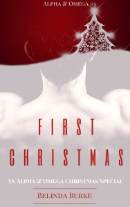 First Christmas series update cover